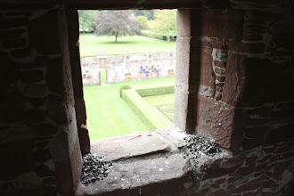 Photo: window view