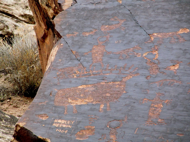 Photo: Petroglyphs along Highway 128