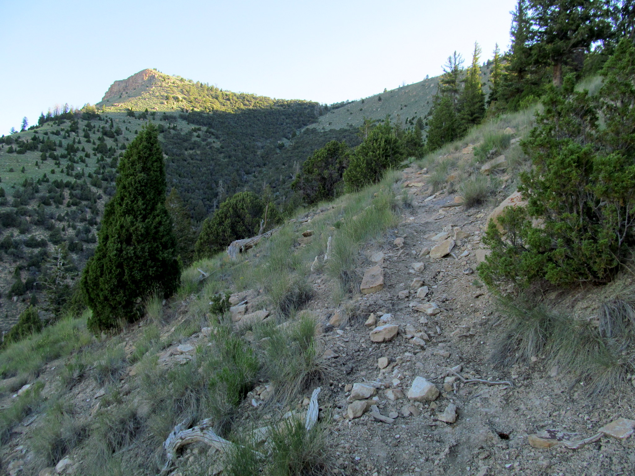 Photo: Bull Pasture Trail
