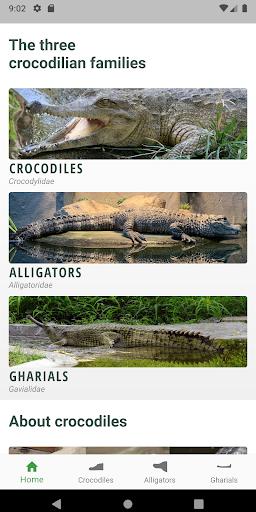 Download Crocodile, Alligator, Gharial: Crocodilian Stories 1.0.0 1