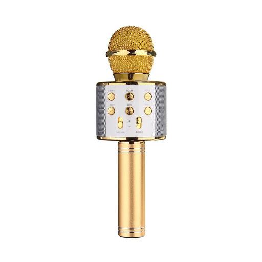 Mic-Karaoke-WSTER-WS-858-3.jpg