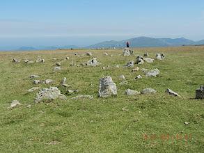 Photo: Le cromlech le plus remarquable de la zone est constitué d'une quarantaine de pierres émergeant du sol de 10 à 90 cm, assemblées en un cercle de 7 m de diamètre. Deux de ces blocs de grès, les plus gros, véritables monolithes, ont été érigés selon un axe précis : NO-SE.