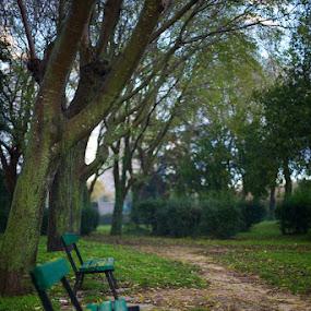 by Ivona Bezmalinovic - City,  Street & Park  City Parks ( benches, park, green, fall, pwcbenches )