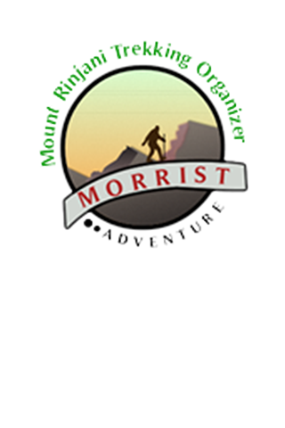 Morrist Adventure- screenshot