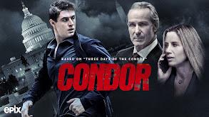 Condor thumbnail