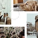 Winter Is Here Collage - Photo Collage item