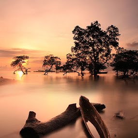 lepa-lepa by Christine Tjandra - Landscapes Waterscapes ( sunset boat )
