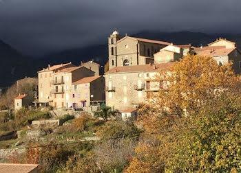terrain à Cozzano (2A)