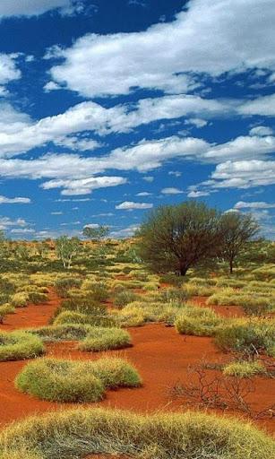 호주 배경 화면 및 테마