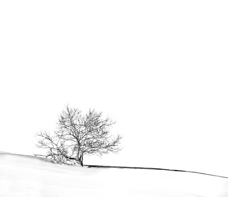 snow di Greg
