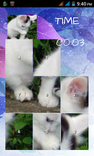 Find your cat:Puzzle game Kids