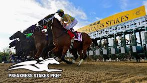 Preakness Stakes Prep thumbnail