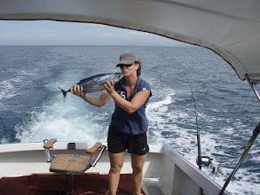 Photo: Skipjack Tuna 2007