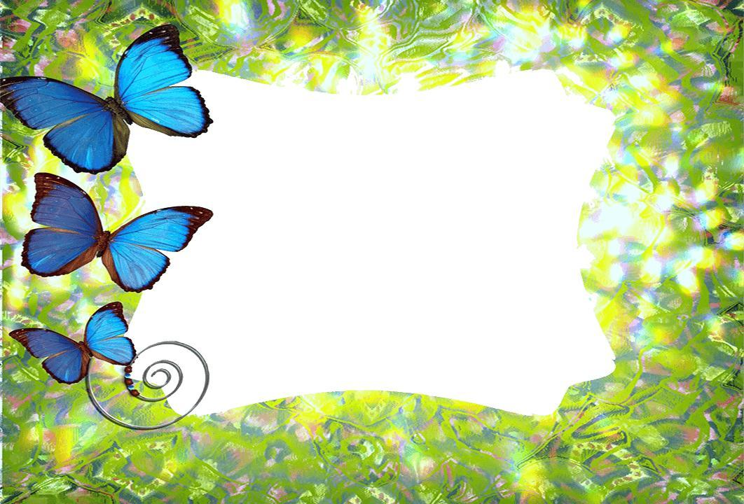 butterfly frames photo effects screenshot