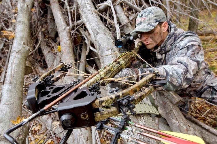 Картинки по запросу выбор арбалета для охоты