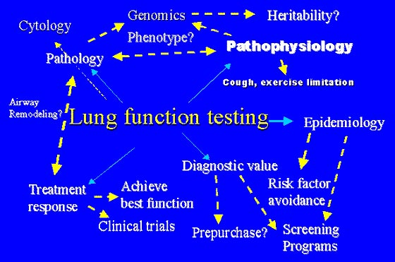 Lung function testing is at the center of development in our understanding of the pathogenesis, pathophysiology, pathology, epidemiology, diagnosis, and treatment of lung disease in the horse.