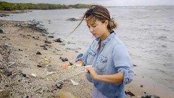 Life Under Sharia/Plastic Oceans
