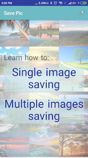 Save Pic - náhled
