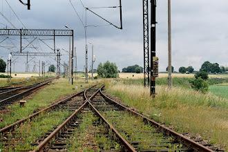 Photo: Odgałęzienie linii nr 209 (do Brodnicy) od linii nr 353 {Kowalewo Pomorskie; 2003-07-07}