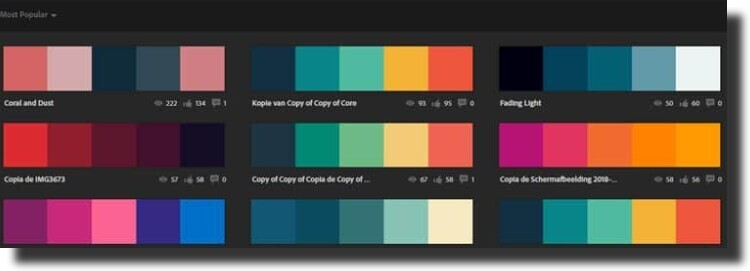 color pallete for Web Design Principles