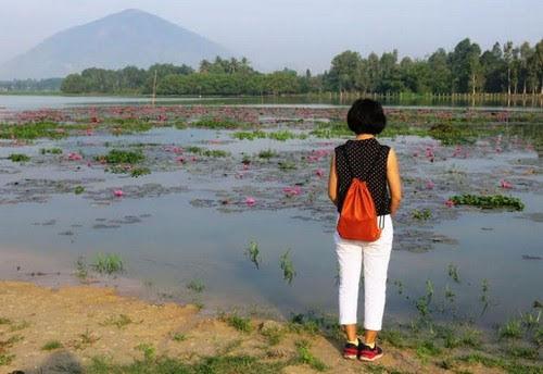 Hồ Dầu Tiếng, sớm mai ở biển Tây Ninh