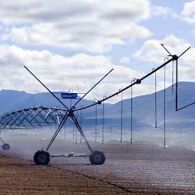 Sprayer by Gavin Falck - Products & Objects Industrial Objects ( water, machinery, gavin falck, sprayer, agricultural, farming, irragator )