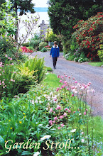 Photo: Garden in spring