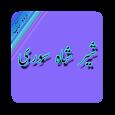 Sher Shah Suri - History icon