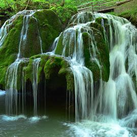 Bigar Waterfall by Neli Dan - Landscapes Waterscapes ( green, nature, waterscape, waterfall, landscape )
