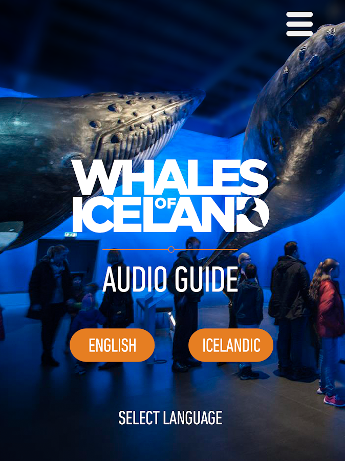 Whales of Iceland Audio Guide!- screenshot