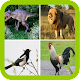 Funny Animal sounds (app)