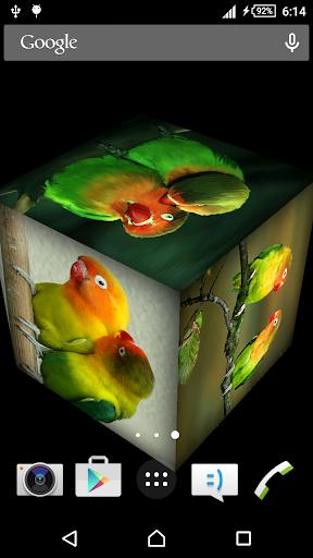 Love Bird Live Wallpaper