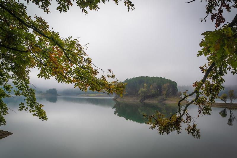 light fog di Tripylon