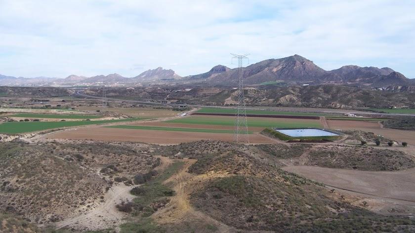 Zona agrícola de regadío en el término municipal de Cuevas del Almanzora.