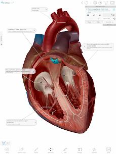 Human Anatomy Atlas 2021:Complete 3D Human Body 10