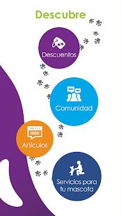 PetLover App for PC-Windows 7,8,10 and Mac apk screenshot 3