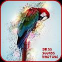 150+ Birds Sounds and Ringtone icon