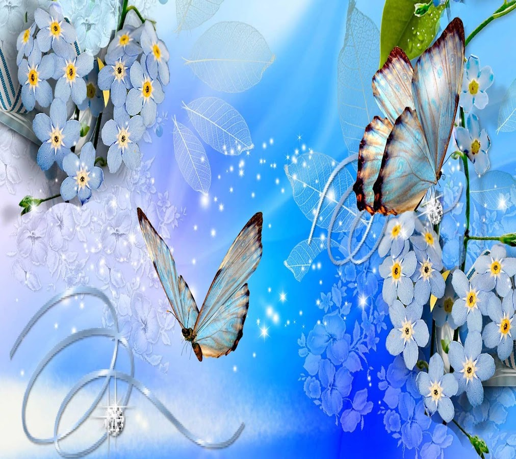 butterfly wallpapers android apps on google play