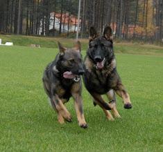 Photo: Ayla og Ailo