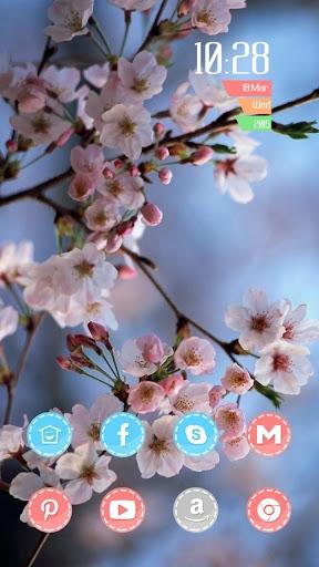 樱花灿烂主题