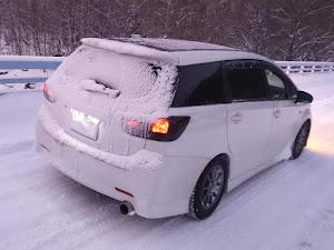 ウィッシュ ZGE25W 1.8S 4WDのカスタム事例画像 ゆう@Quattroさんの2020年01月11日20:25の投稿