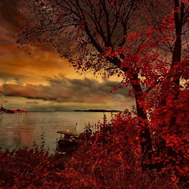 Autumn sunset by Monita Alstadsæter - Landscapes Sunsets & Sunrises ( sunset, autumn )