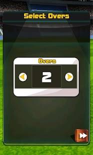 England Vs South Africa Cricket Game - náhled