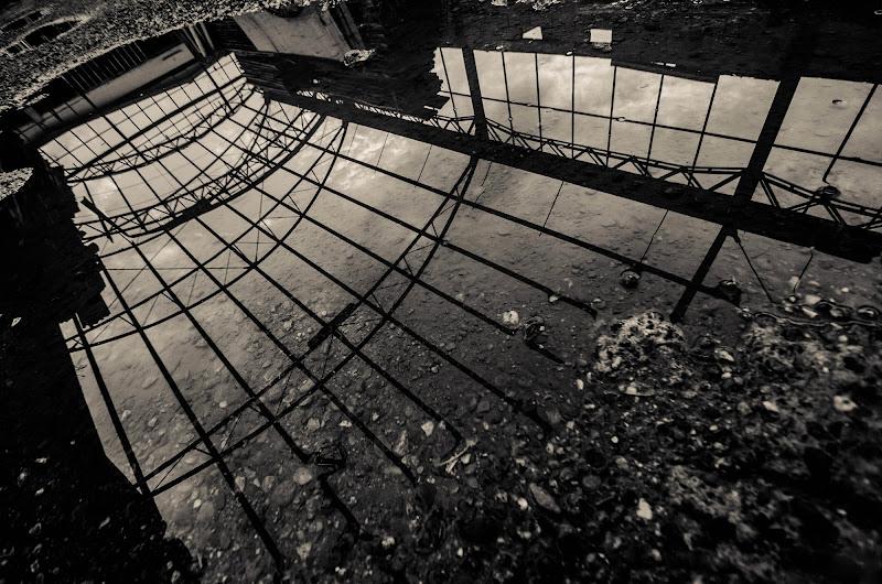 Upside Down di Pandality_