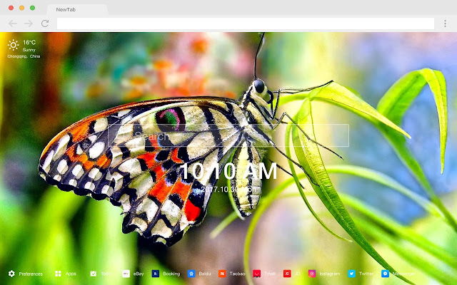 Butterfly New Tab Page Top Wallpapers Themes