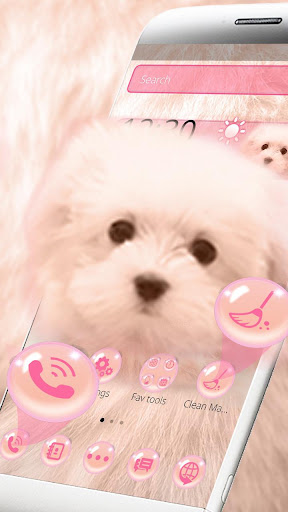 Pink Cute Puppy Theme for PC