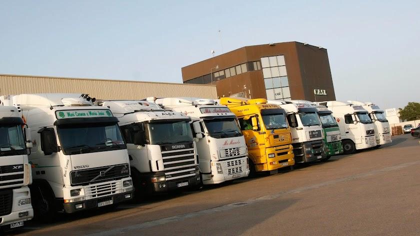 Camiones a las puertas de una comercializadora hortofrutícola.