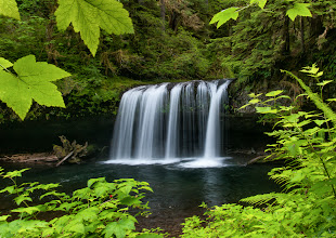 Photo: Butte Creek Falls  Here's another look at Butte Creek Falls from my visit there last weekend. I had to cuddle up with the side of the trail and get creative with the tripod to get the upper leaves into this shot. There was a breeze so I ended up holding the branches as still as I could.  #waterfall  #oregonlandscapephotography   Prints available: http://bit.ly/1mnuPpG