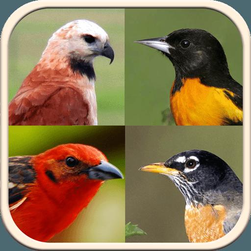 非栖息鸟指南 教育 App LOGO-硬是要APP