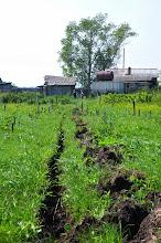 Photo: Tranchée pour l'irrigation 2